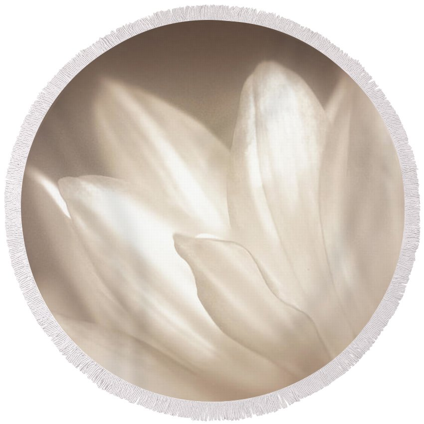 Bloom Round Beach Towel featuring the photograph Delicate by Scott Norris