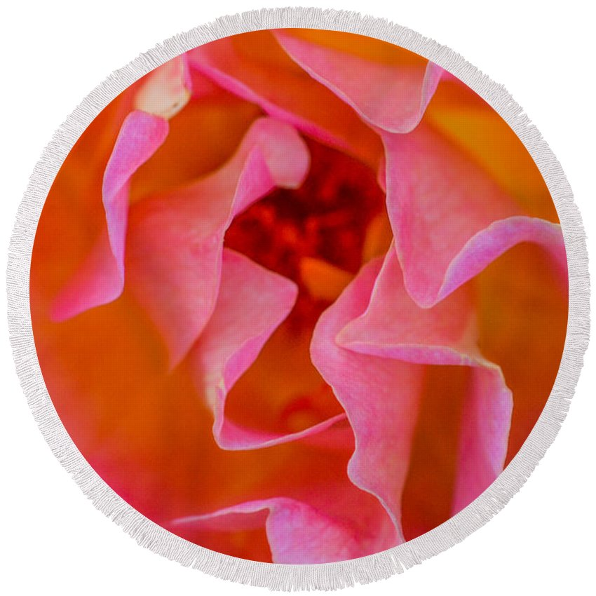 Rose Round Beach Towel featuring the photograph Depth by Mary Hahn Ward