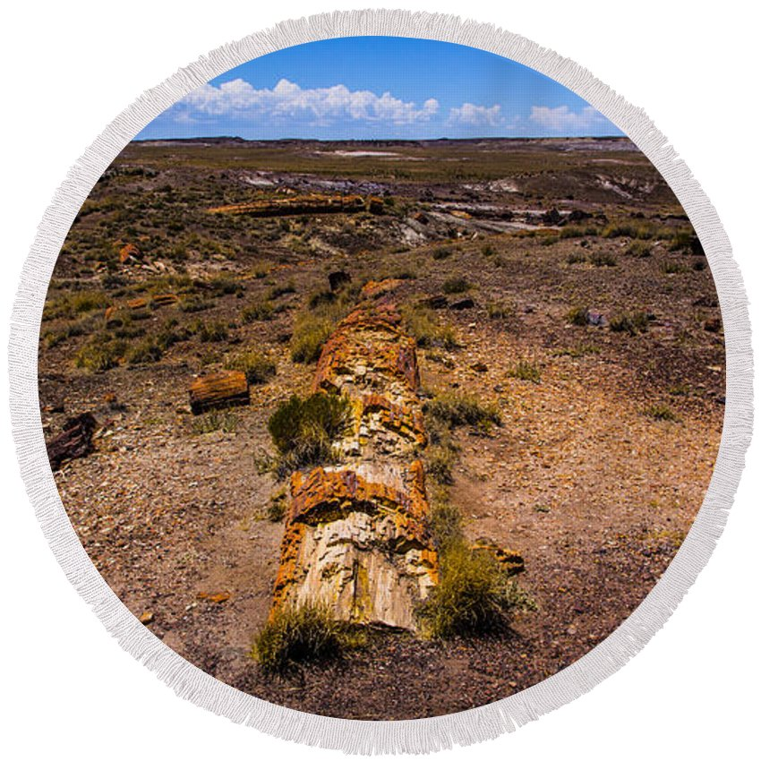 Route 66 Round Beach Towel featuring the photograph Desert Log by Angus Hooper Iii