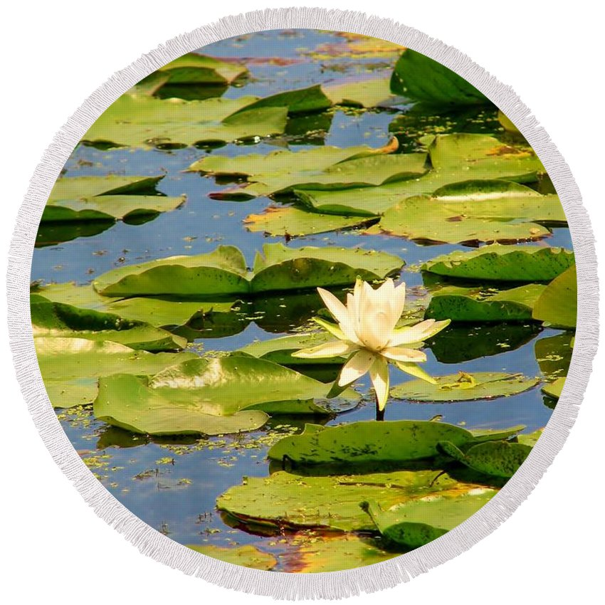 Lilly Round Beach Towel featuring the photograph Dirty Monet by Art Dingo
