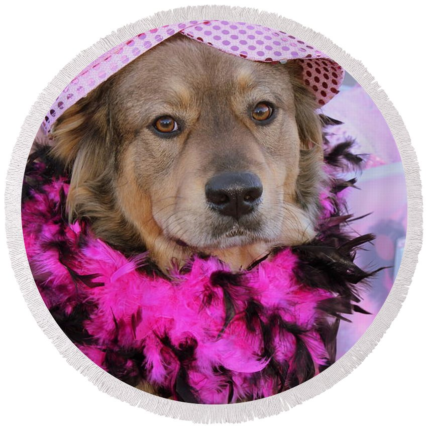 Dog Round Beach Towel featuring the photograph Do You Like My Pink Hat by Fiona Kennard