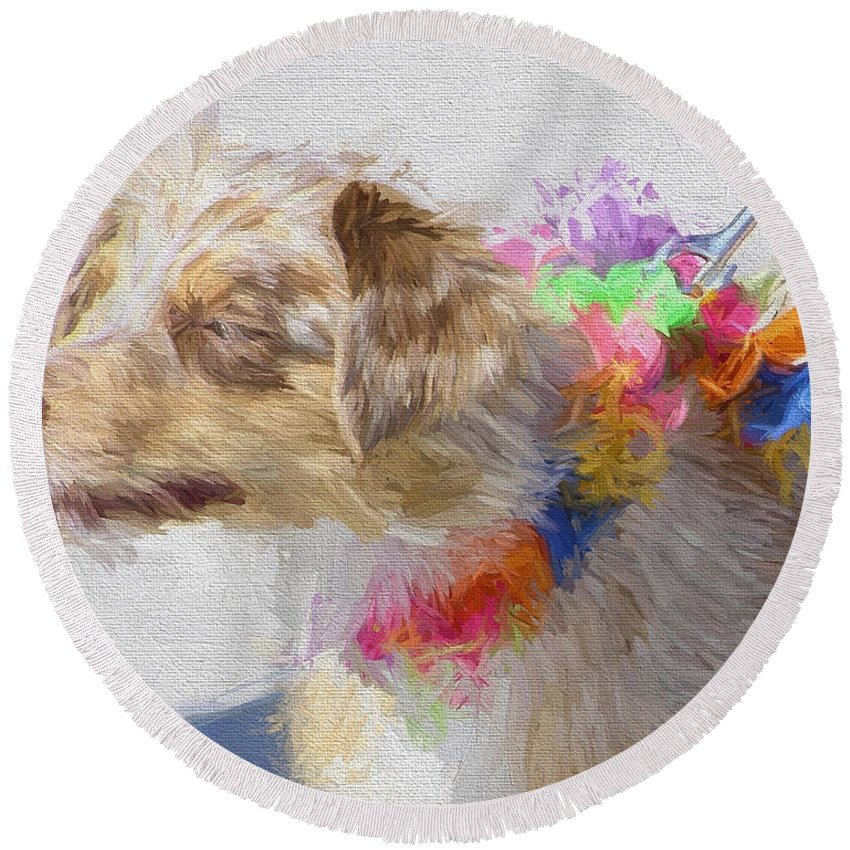 Dog Round Beach Towel featuring the photograph Dog Daze 5 by Shannon Story
