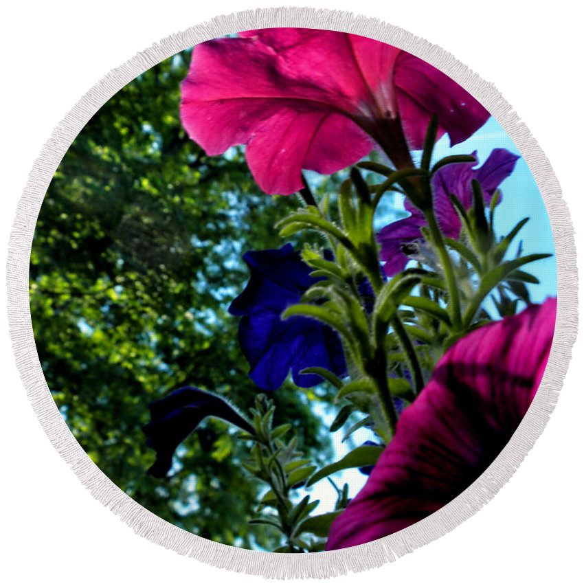 Petunia Round Beach Towel featuring the photograph Donna's Blooming Petunias by Thomas Woolworth