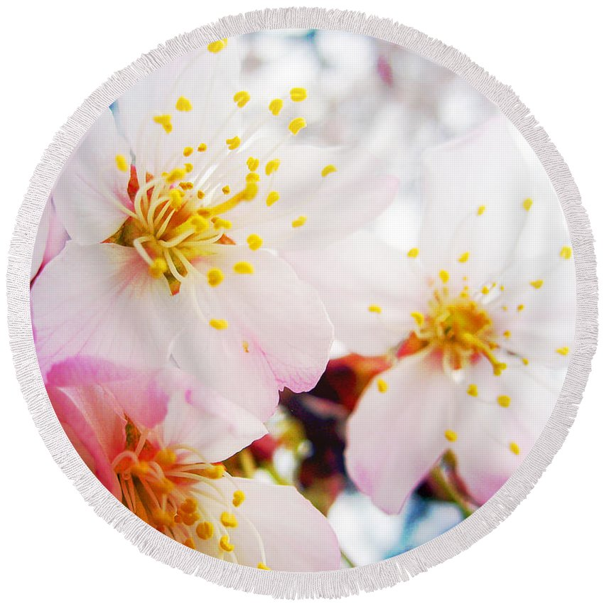 Cherry Round Beach Towel featuring the photograph Dreamy Blossom by Nina Ficur Feenan