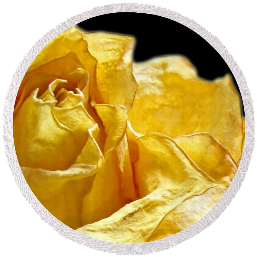 Nature Round Beach Towel featuring the photograph Dried Yellow Rose II by Debbie Portwood