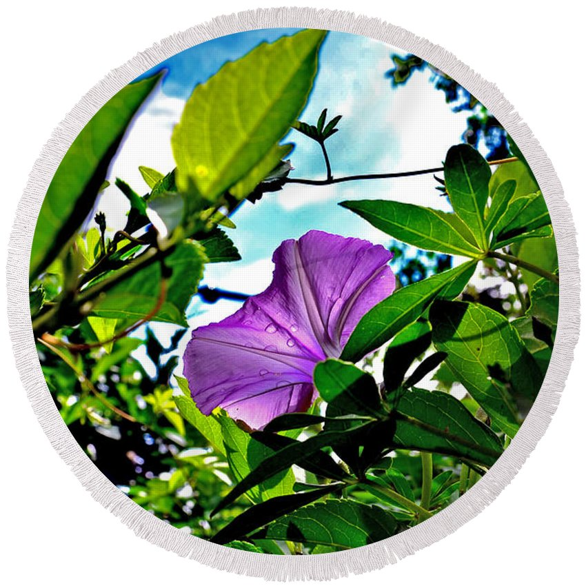 Flower Round Beach Towel featuring the photograph Droplets On Petal by Shoot AtSight
