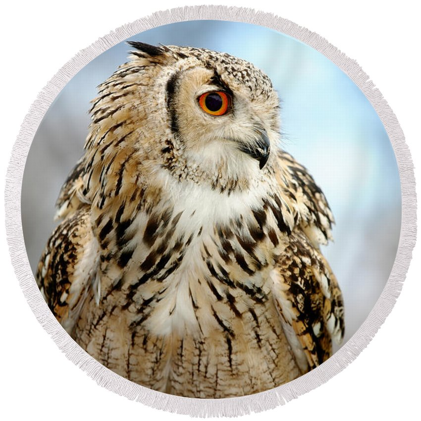 Animal Round Beach Towel featuring the photograph Eagle Owl by Jan Brons