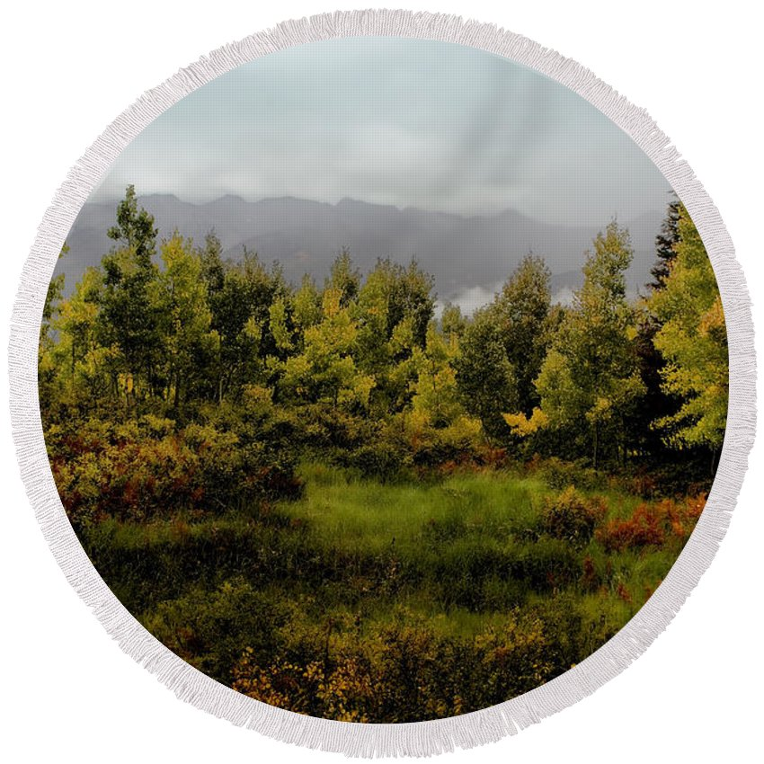 Kebler Pass Round Beach Towel featuring the photograph Early Fall On Kebler Pass by Ellen Heaverlo