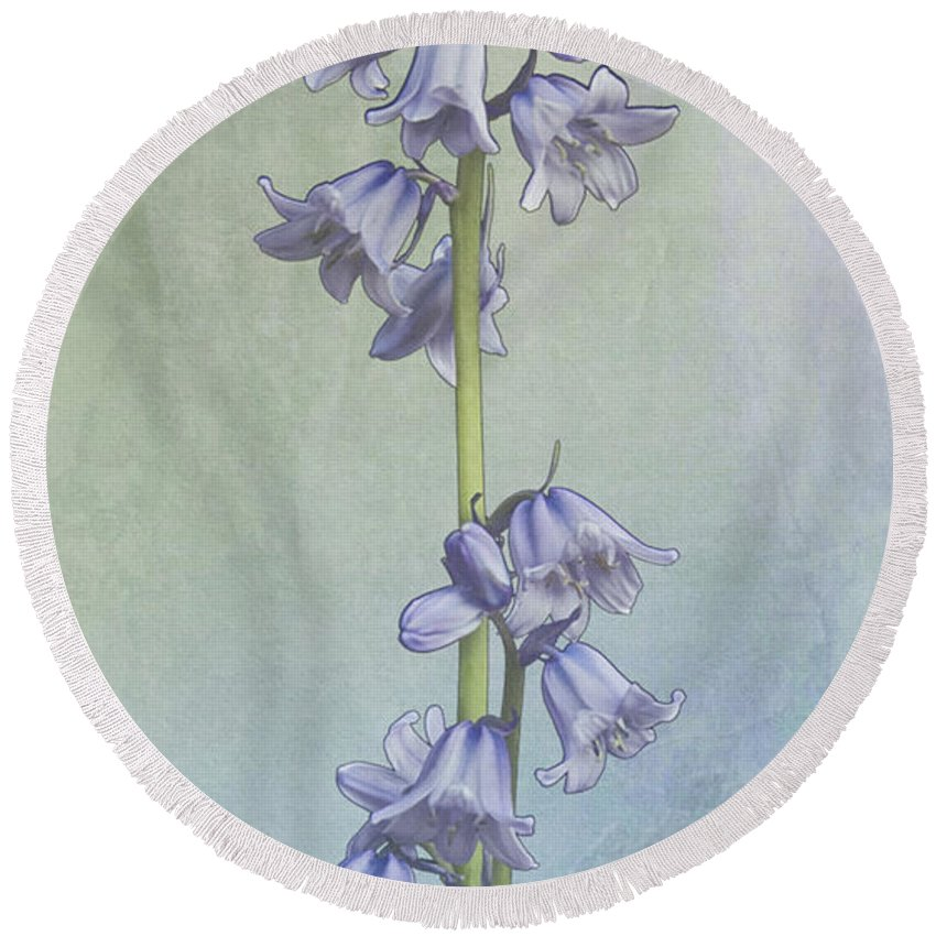 Easter Round Beach Towel featuring the photograph Easter Hyacinth by Michael Peychich
