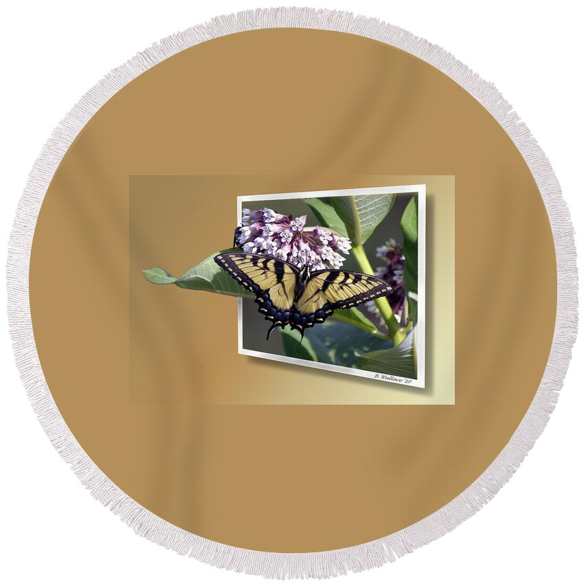 2d Round Beach Towel featuring the photograph Eastern Tiger Swallow Tail by Brian Wallace