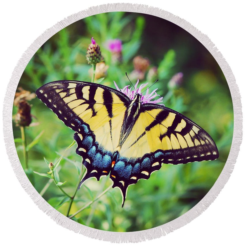 Butterfly Round Beach Towel featuring the photograph Eastern Tiger Swallowtail by Kerri Farley