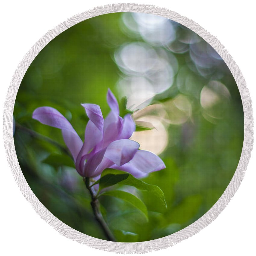 Flower Round Beach Towel featuring the photograph Effervescent Magnolia by Mike Reid