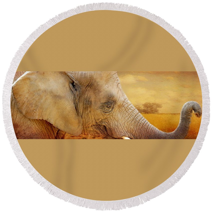 Elephant Round Beach Towel featuring the photograph Elephant by Heike Hultsch