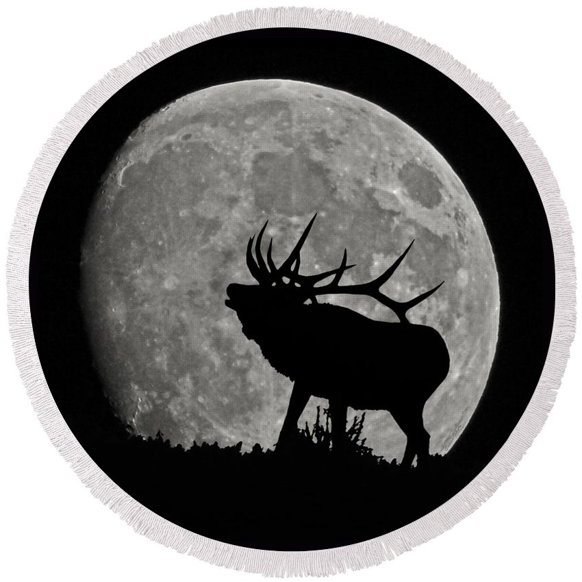 Silhouette Round Beach Towel featuring the photograph Elk Silhouette On Moon by Ernie Echols