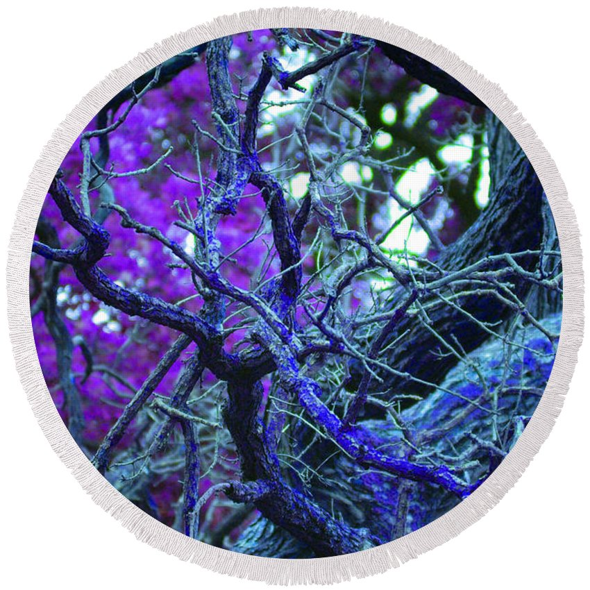 First Star Art By Jrr Round Beach Towel featuring the photograph Enchanted Forest by First Star Art