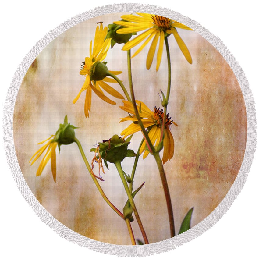 Sunflower Round Beach Towel featuring the photograph End Of Summer Bouquet by Susan Capuano