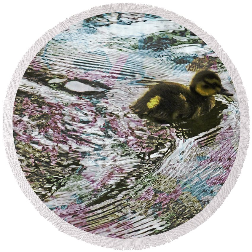 Creatures Round Beach Towel featuring the photograph Even The Smallest Leave Ripples In Their Wake by Steve Taylor