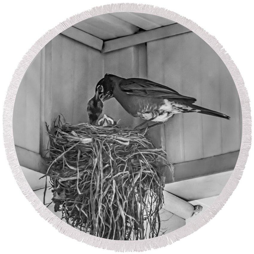 Bird Round Beach Towel featuring the photograph Every Spring by Steve Harrington