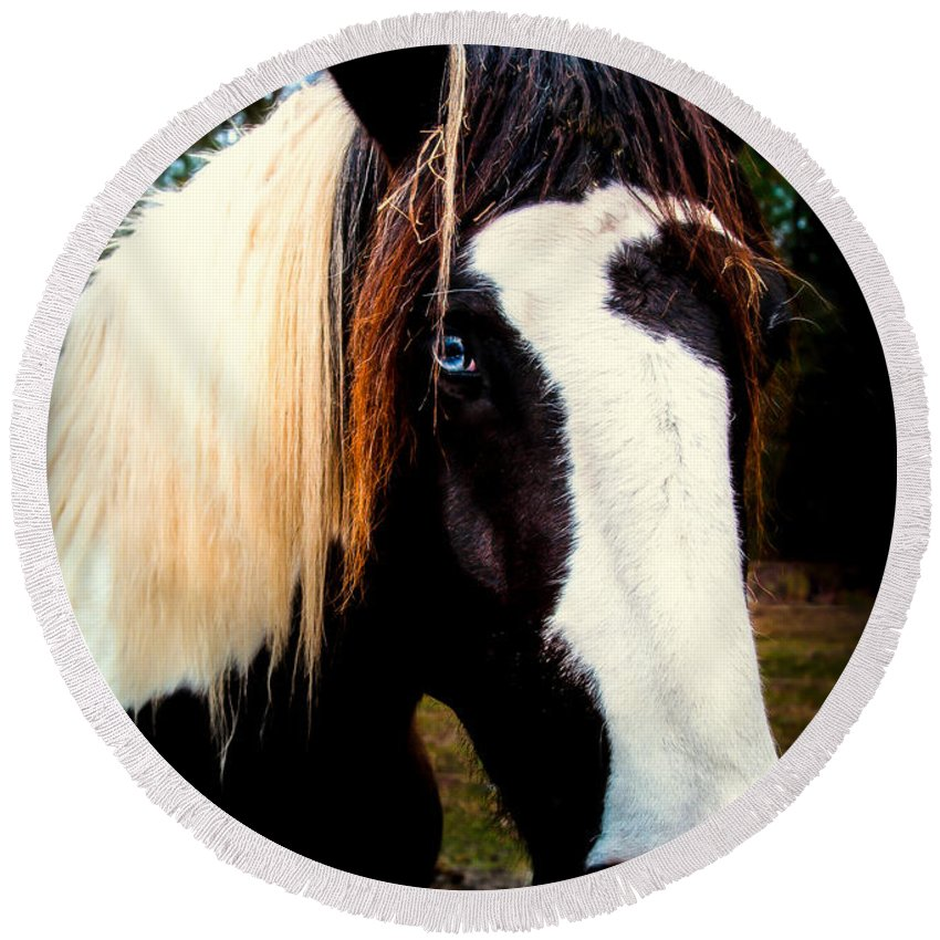 Blue Eyed Horses.horses Round Beach Towel featuring the photograph Eyes Of Blue by Karen Wiles