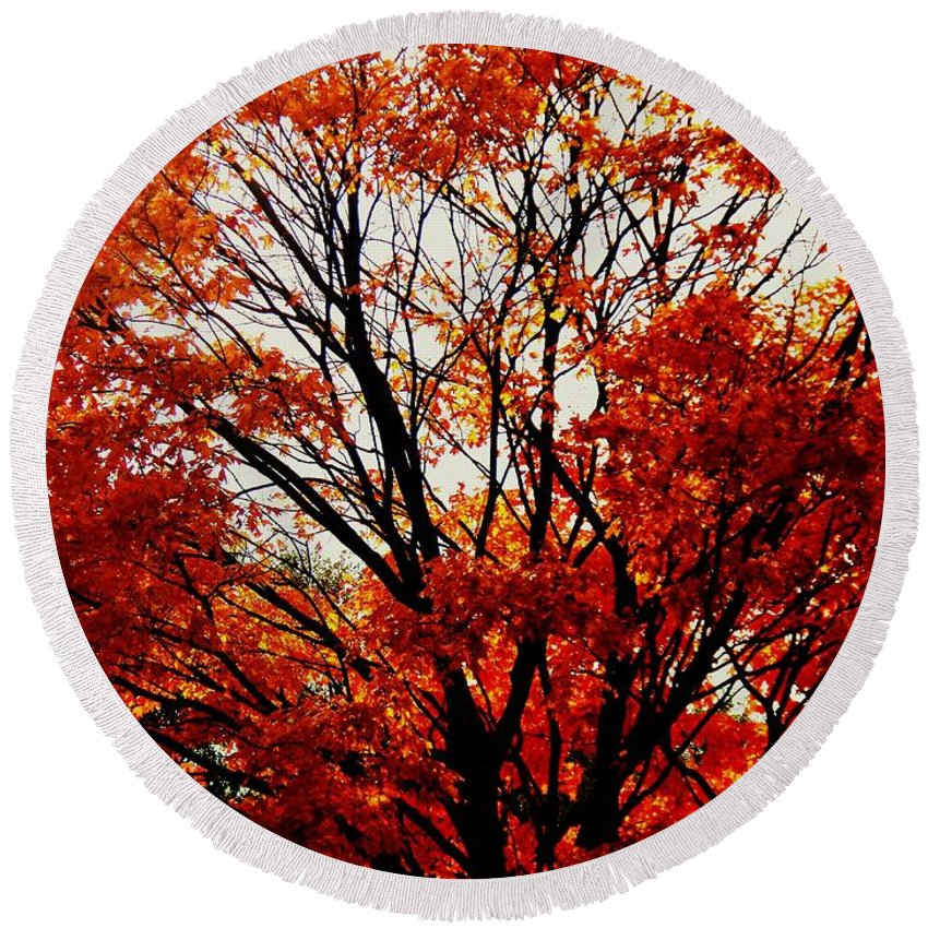 Fall Round Beach Towel featuring the photograph Fall Colors Cape May Nj by Eric Schiabor