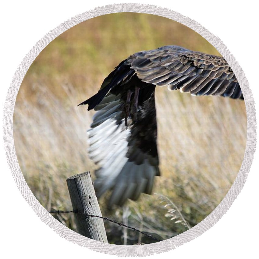 Vulture Round Beach Towel featuring the photograph Fall Flight by Bonfire Photography