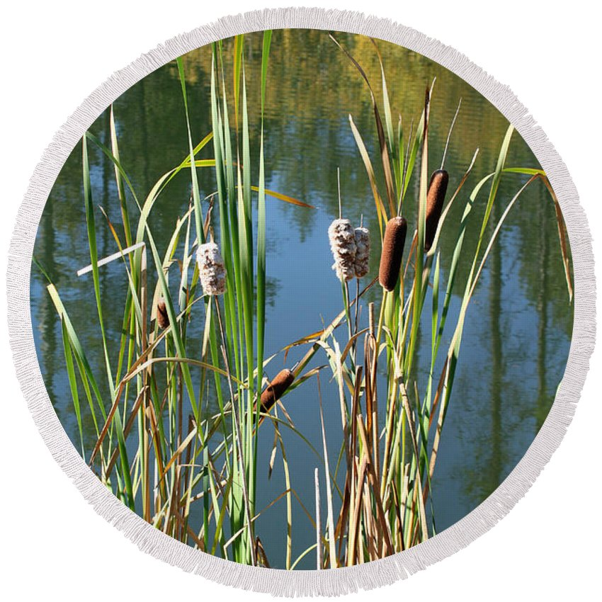 Montana Round Beach Towel featuring the photograph Fall Reflections by Bob Hislop