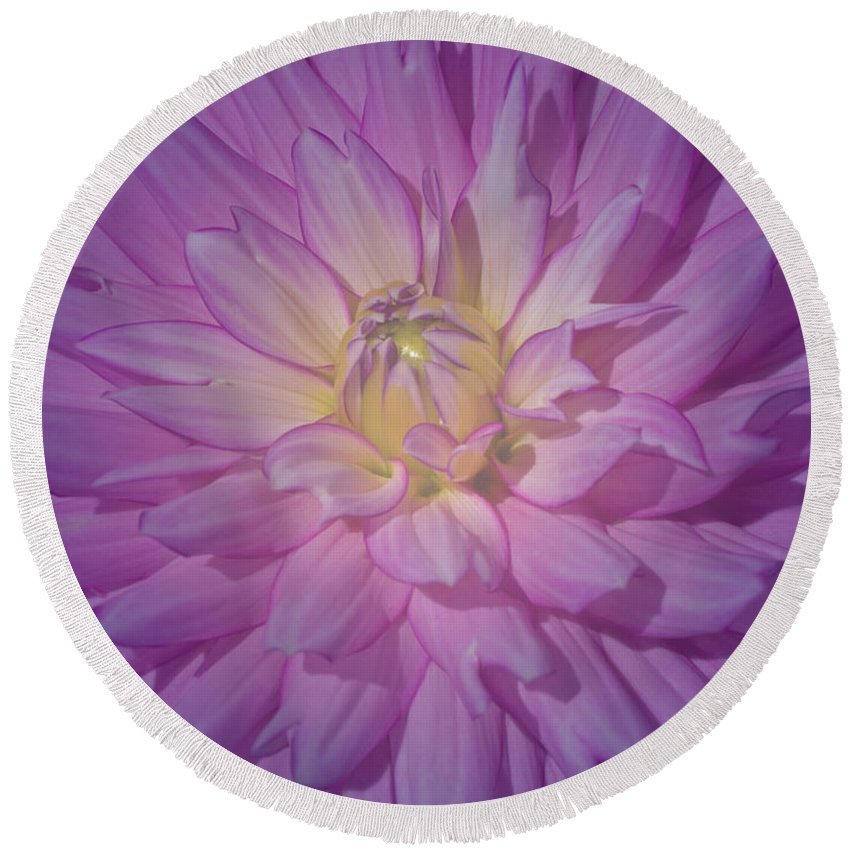 Pink Round Beach Towel featuring the photograph Fantasy In Pink by Ann Horn