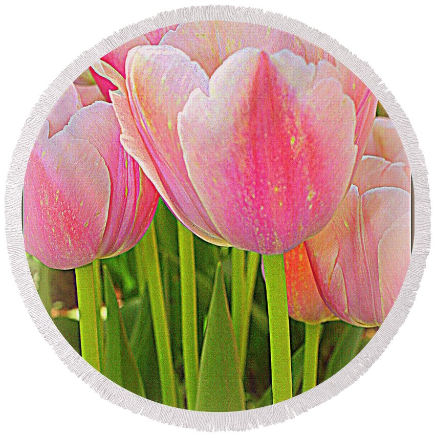 Tulips Round Beach Towel featuring the photograph Fantasy In Pink - Tulips by Dora Sofia Caputo Photographic Design and Fine Art