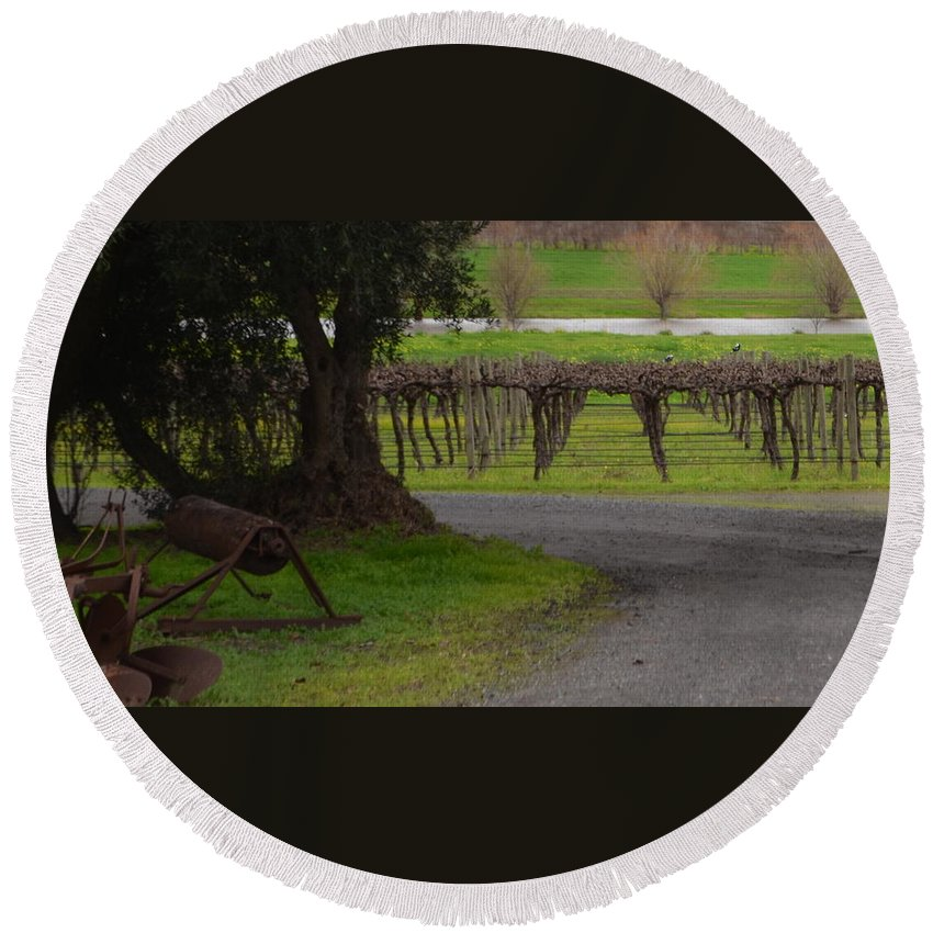Mclaren Vale Round Beach Towel featuring the photograph Farm And Vineyard by Cheryl Miller