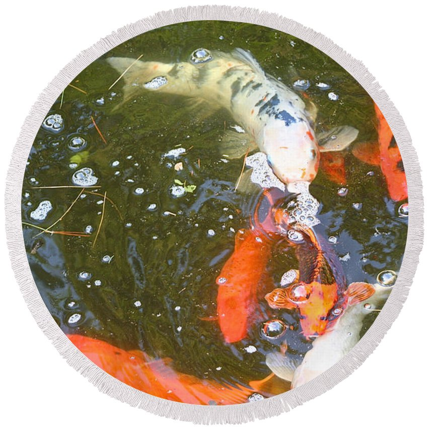 Koi Round Beach Towel featuring the photograph Feeding Time by Susan Herber