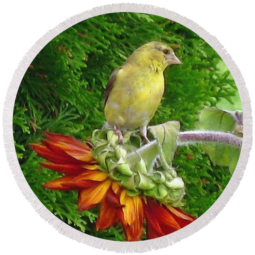 American Goldfinch Round Beach Towel featuring the painting Female American Goldfinch by J McCombie