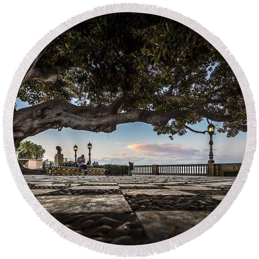 Andalucia Round Beach Towel featuring the photograph Ficus Magnonioide In The Alameda De Apodaca Cadiz Spain by Pablo Avanzini