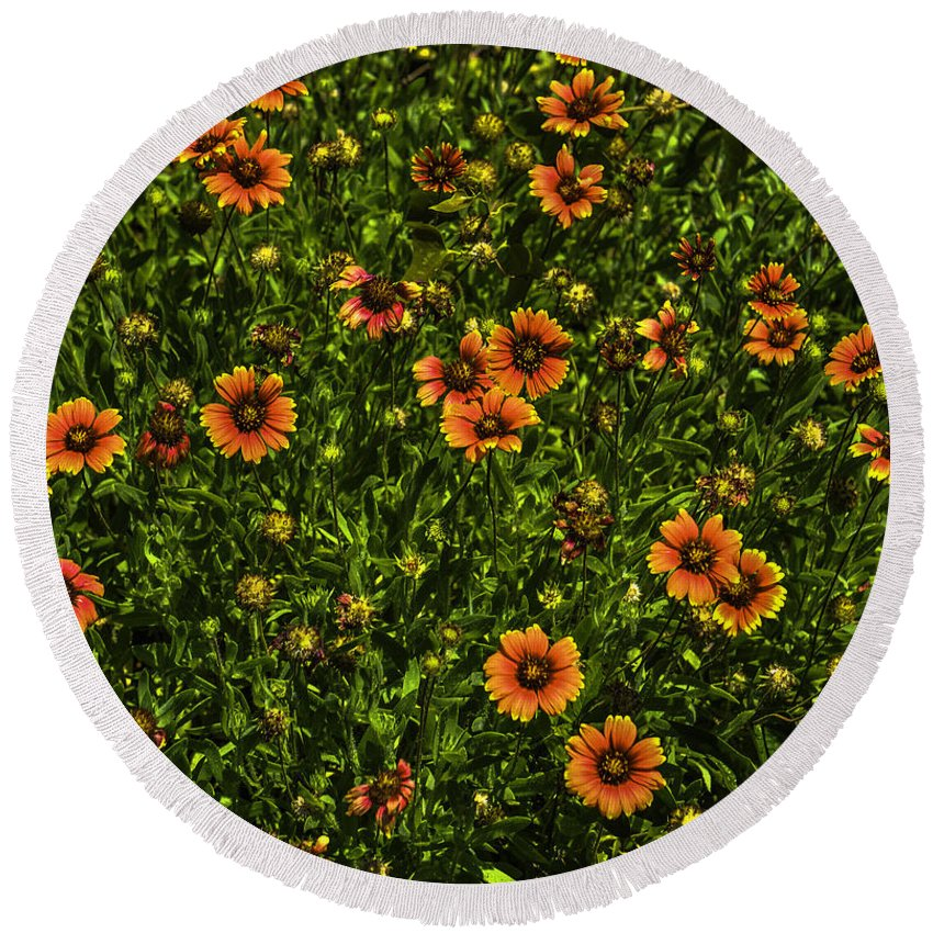Field Of Flowers Round Beach Towel featuring the photograph Field Of Flowers by Dale Powell