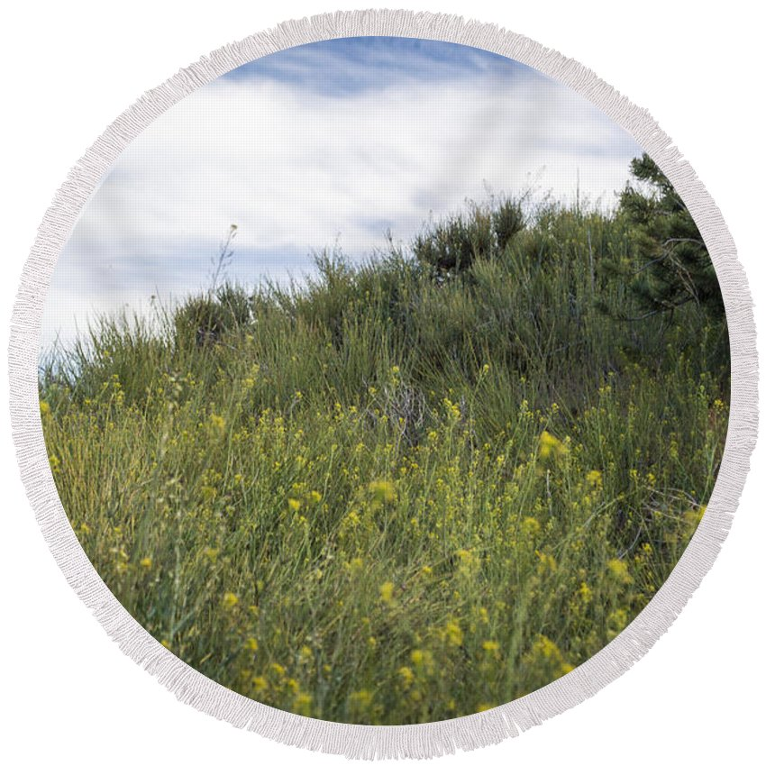 Landscape Round Beach Towel featuring the photograph Field Of Wild Mustard by Debra Powell