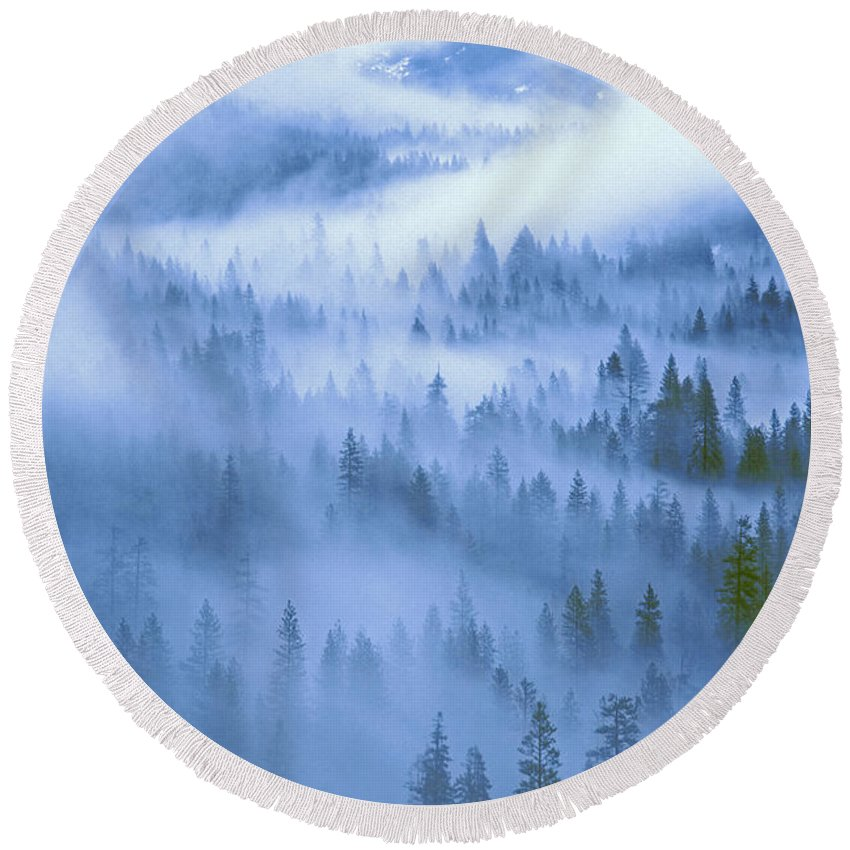 North America Round Beach Towel featuring the photograph Fir Trees Shrouded In Fog In Yosemite Valley by Dave Welling