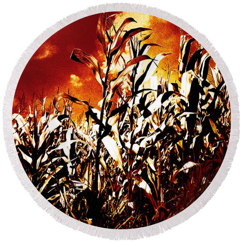 Flames Round Beach Towel featuring the photograph Fire In The Corn Field by Gaspar Avila