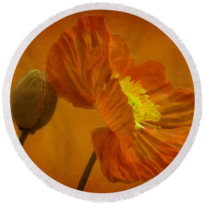 Orange Round Beach Towel featuring the photograph Flaming Beauty by Heiko Koehrer-Wagner