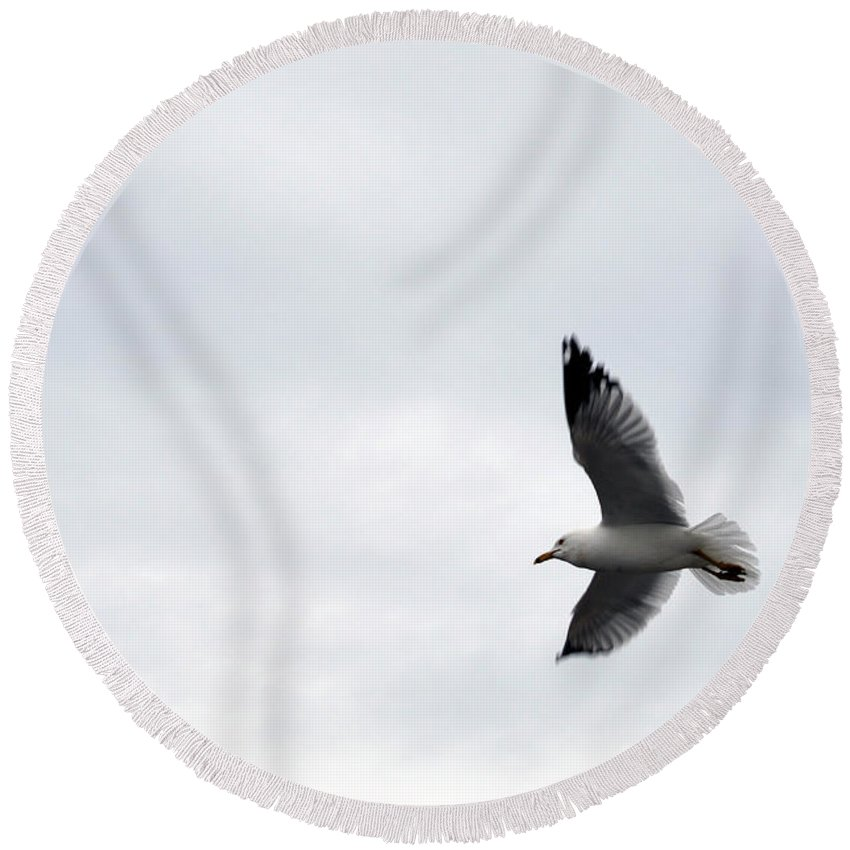 Seagull Round Beach Towel featuring the photograph Flight Of The Seagull by Linda Kerkau