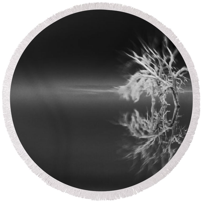 Reflection Round Beach Towel featuring the photograph Floating Deadwood Black And White by Scott Campbell
