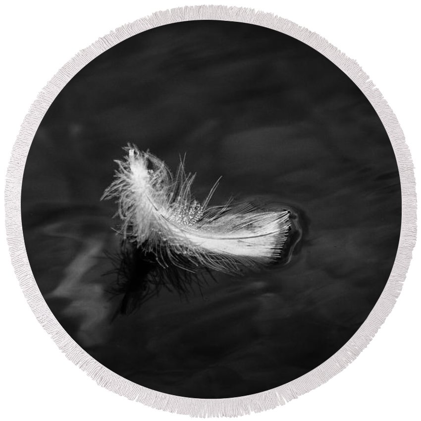 Feather Round Beach Towel featuring the photograph Floating Feather by Gaurav Singh