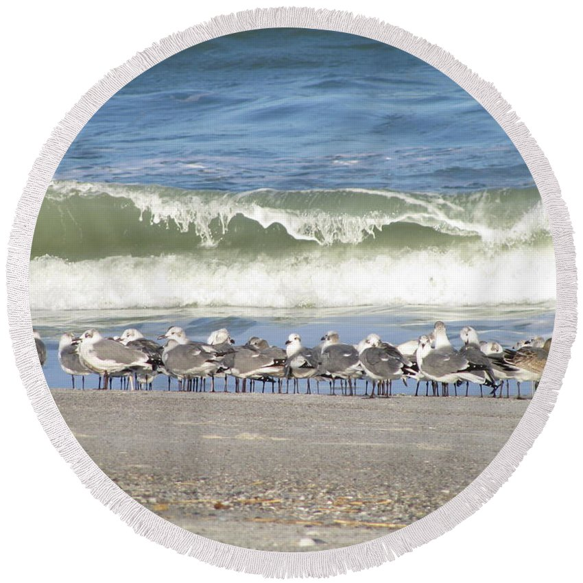 Landscape Round Beach Towel featuring the photograph Flock And Wave by Ellen Meakin
