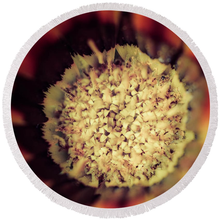 Flower Beauty Round Beach Towel featuring the photograph Flower Beauty Iv by Marco Oliveira