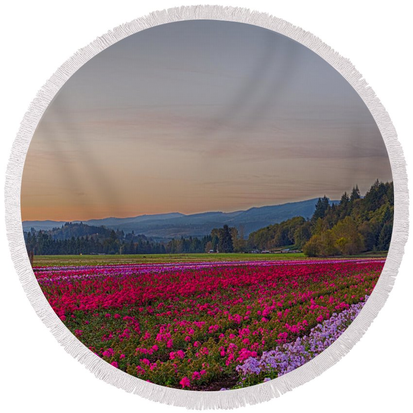 Flowers Round Beach Towel featuring the photograph Flower Field At Sunset In A Standard Ratio by Leah Palmer