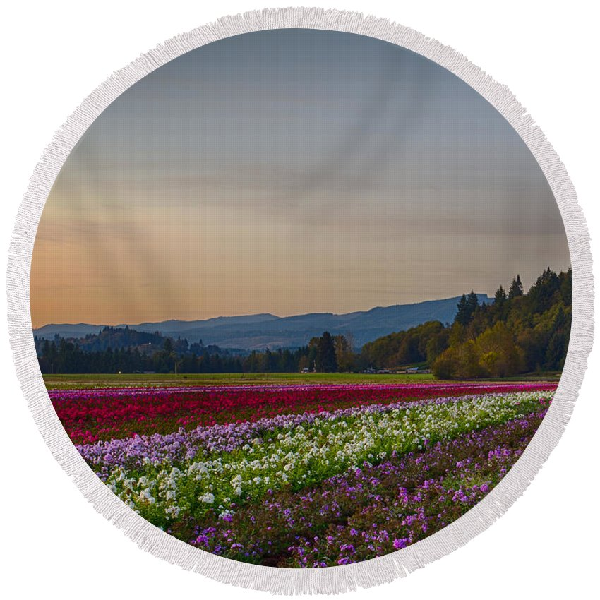 Flowers Round Beach Towel featuring the photograph Flower Fields 2 Cropped Into A Standard Ratio by Leah Palmer