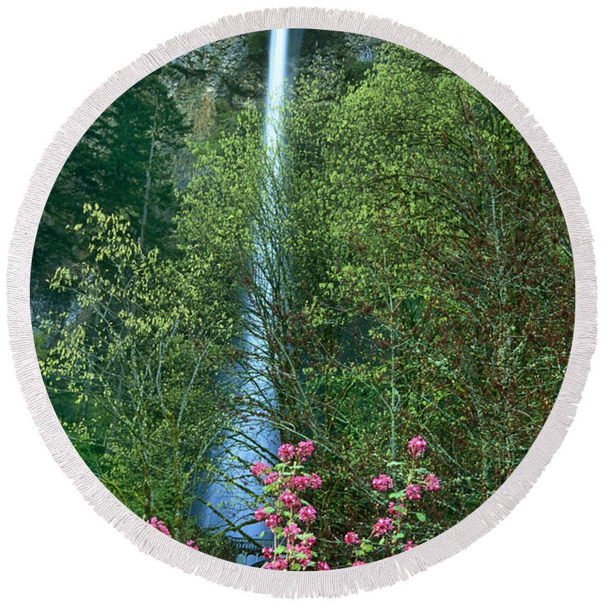 North America Round Beach Towel featuring the photograph Flowering Tree Below Multnomah Falls Columbia River Gorge Nsa Oregon by Dave Welling