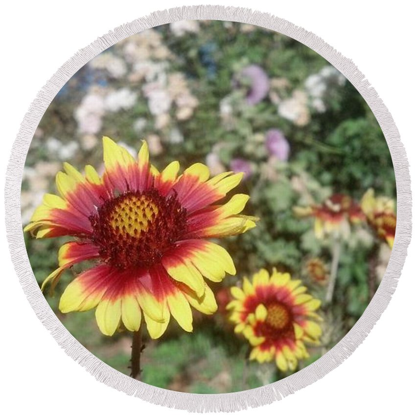Riley's Farm Round Beach Towel featuring the photograph Flowers At The Farm by Steve Scheunemann