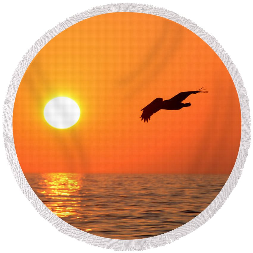 Fine Art Photography Round Beach Towel featuring the photograph Flying Into The Sun by David Lee Thompson