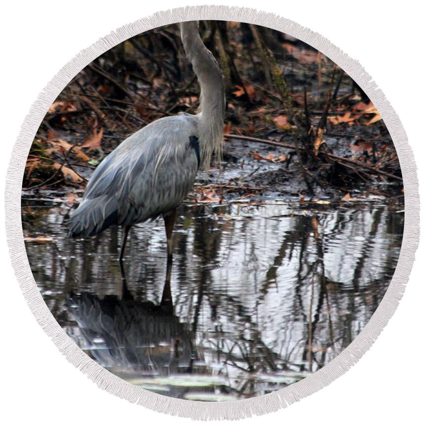Heron Round Beach Towel featuring the photograph Foggy Bog Heron by Kenny Glotfelty