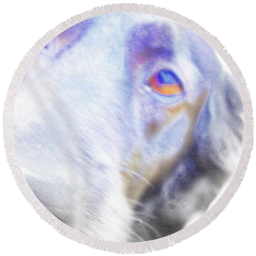 Dove Round Beach Towel featuring the photograph A Dog Will Be Forever Yours by Hilde Widerberg