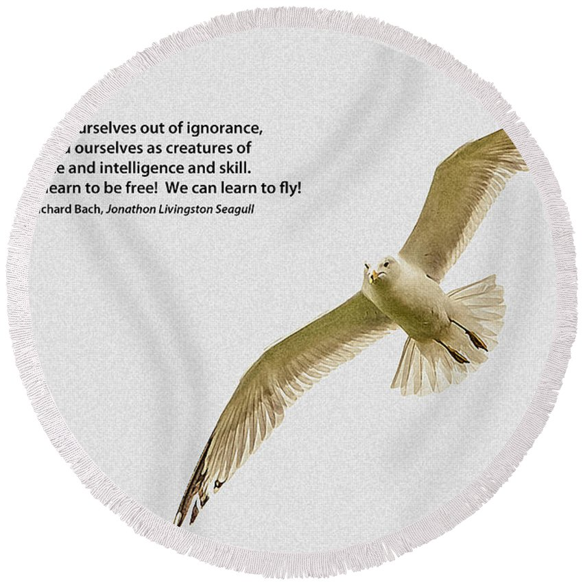 Seagull Round Beach Towel featuring the photograph Free Flight by Grace Grogan